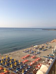 photo 3 (10)